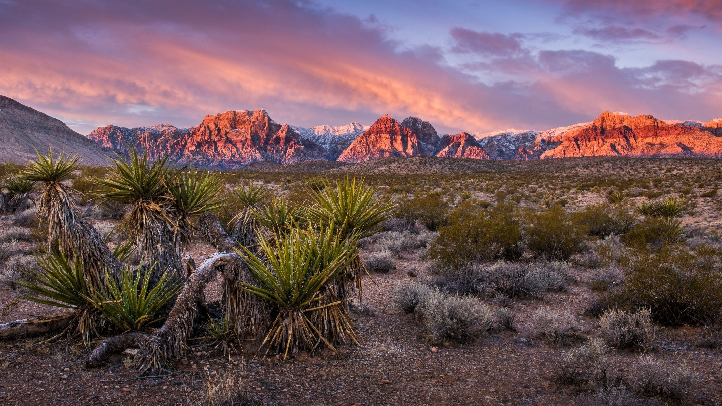 A beautiful sunrise at Red Rock Canyon