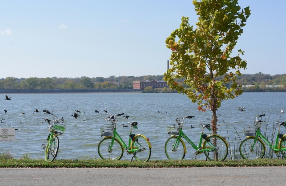 Bike service at White Rock Lake, Dallas, TX